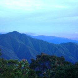 Blue Mountains, Kingston, Jamaica